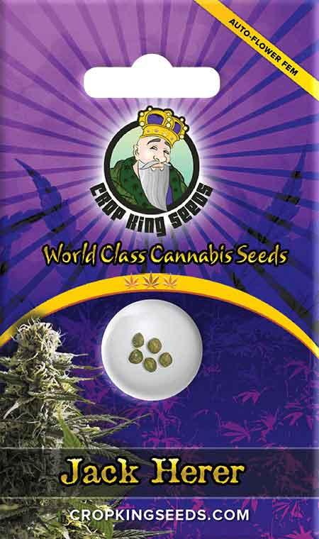 Jack Herer Autoflower Seeds
