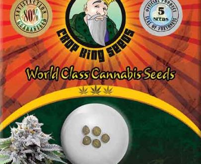 Blue Cookies Feminized Seeds Opts 405x330