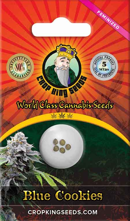 Blue Cookies Feminized Seeds Opts