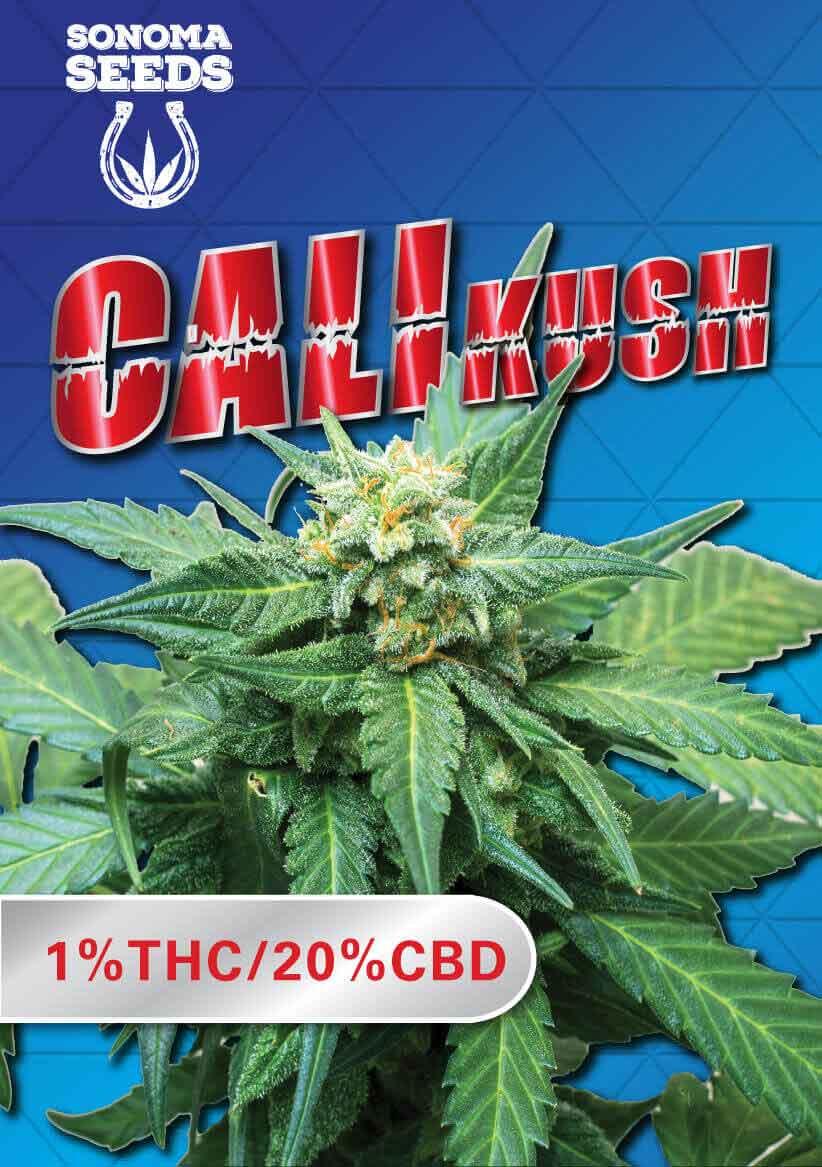 Cali Kush Seeds
