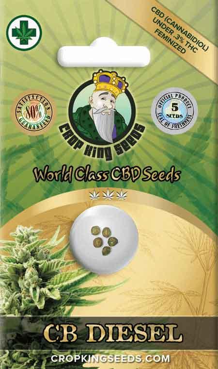 CB Diesel CBD Seeds