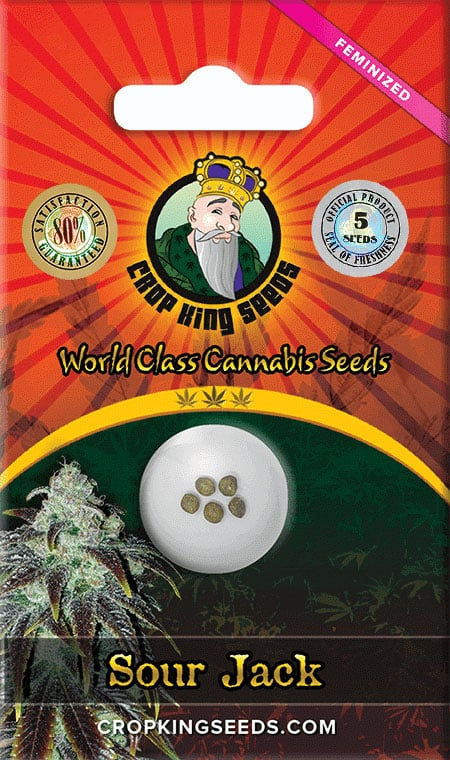 Sour Jack Feminized Seed Opt