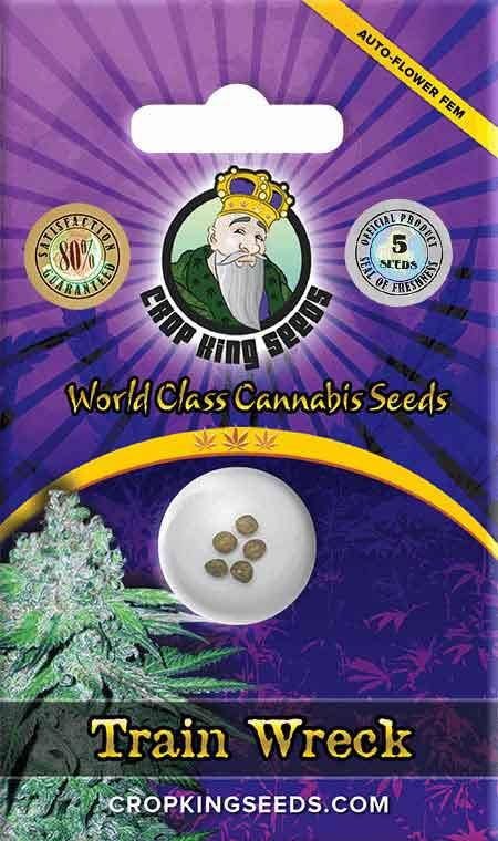 Train Wreck Autoflower Seeds Opt 1